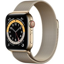 watch series 6 gps + cell 40mm gold steel gold milanese