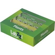 labzz p12 prepared slides set