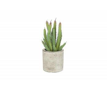 Hamilton Living Cactus artificiel en pot de ciment