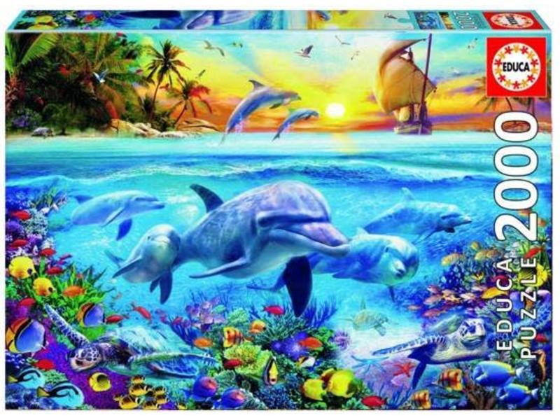 2000 famille de dauphins