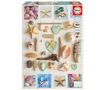 educa 1000 collage de coquillages