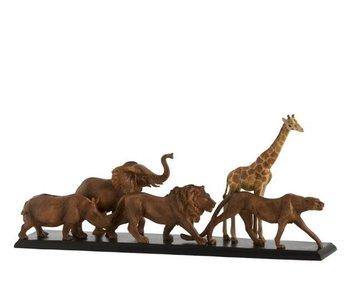 J-Line safari beeld