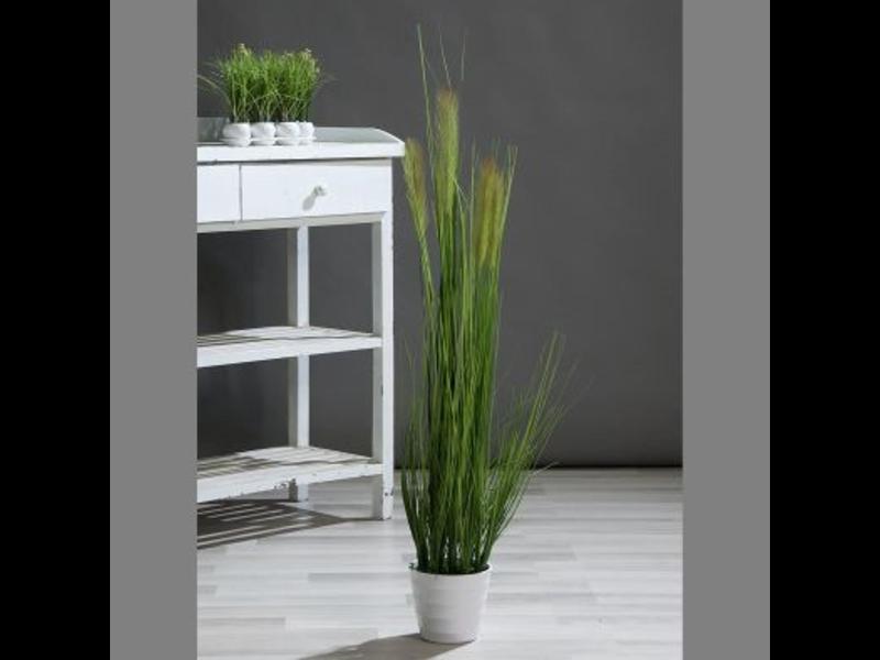 Siergras in witte pot 110cm