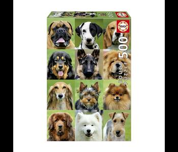 educa 500 Collage chiens