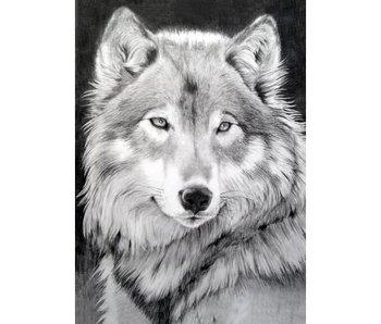Dia paint WD086 - Grey Wolf 27x38 cm