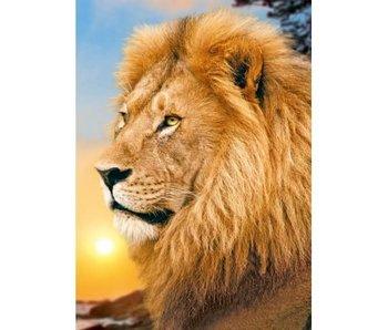 Wizardi Dia paint WD070 - Lion King 27x38 cm