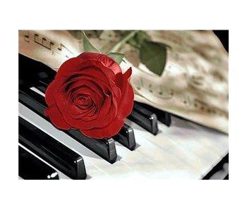 Dia paint WD053 - Rose Music 38x48 cm