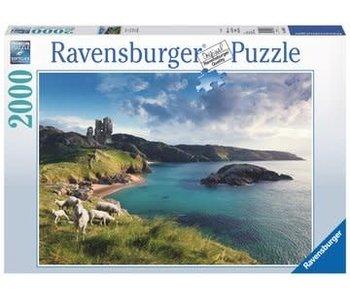 Ravensburger Het groenen eiland 2000