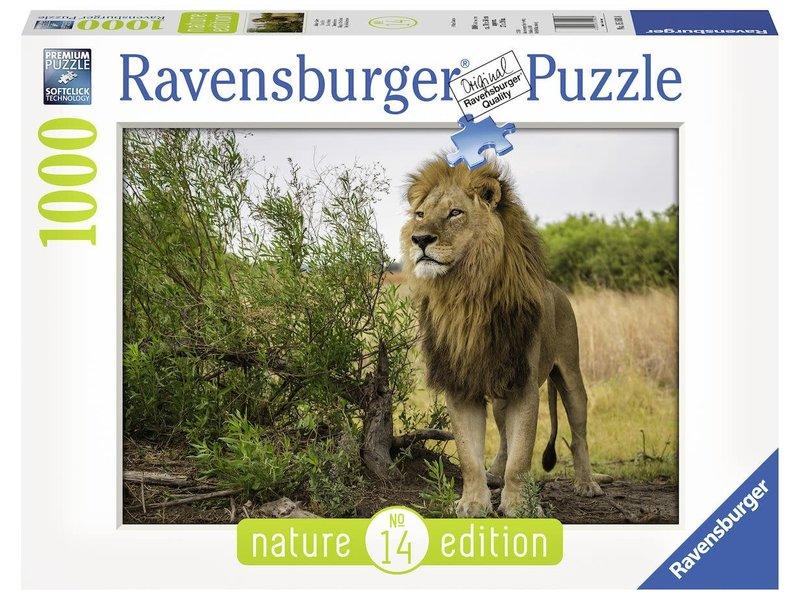 Puzzel trotse leeuw: 1000 stukjes (151608)