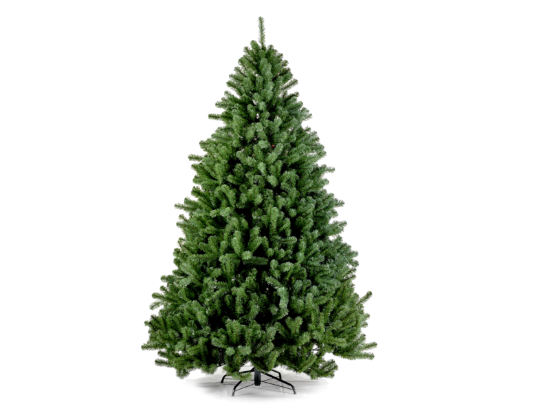 SAPIN4 Boston 225 cm