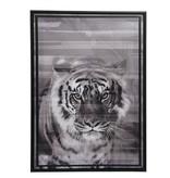 Toile avec cadre tigre 50x70x4cm noir