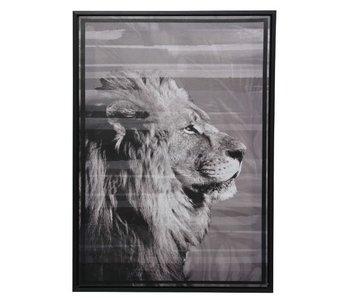 Canvas met lijst leeuw 50x70x4 cm zwart
