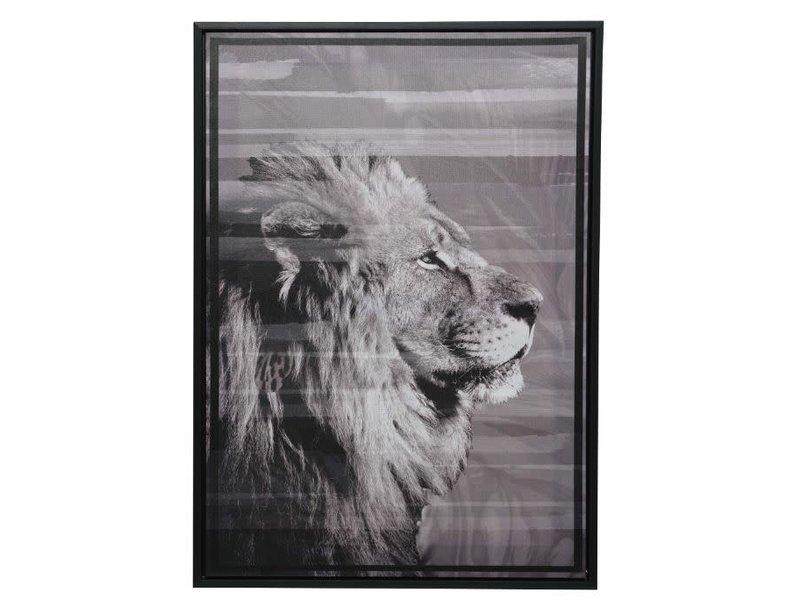 Schilderij canvas lijst leeuw 50x70x4 cm zwart