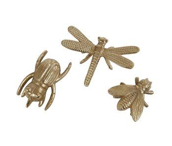 Hamilton Living Insecte de mouche or - 9x9x3 CM