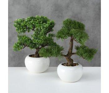 Kunstplant Bonsai 1  | grof
