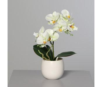 Orchidee - matière synthétique - 22cm