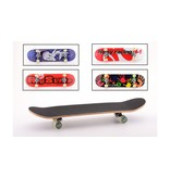 Sports active city skateboard