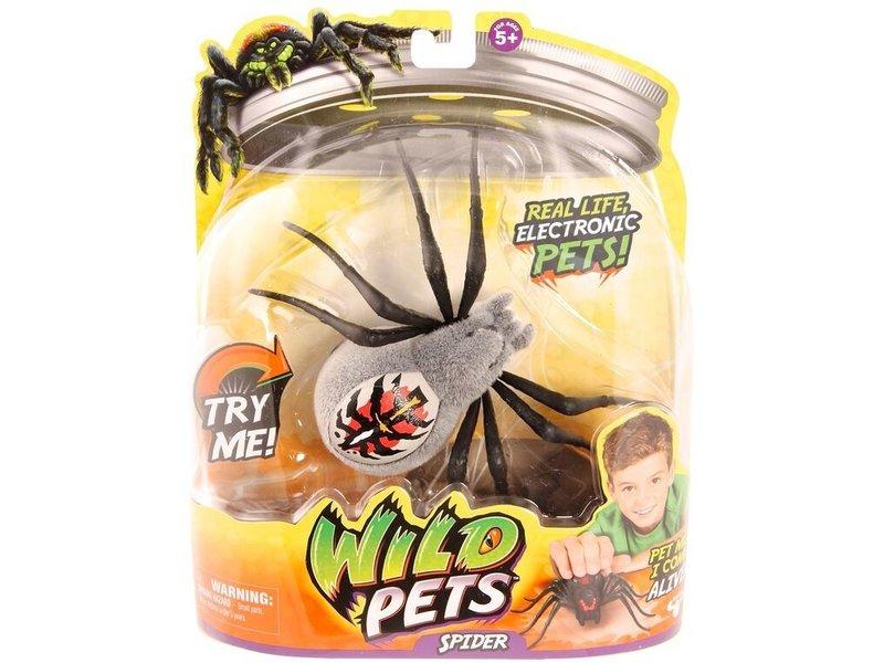 Wild Pets S1 Spider