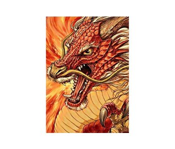 Dia paint WD177 - Chinese Dragon 27x38 cm