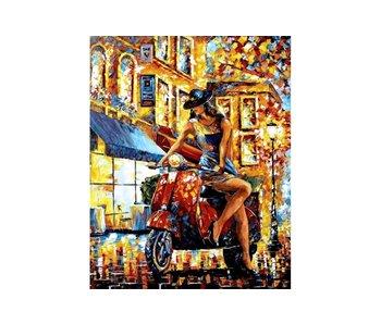 Dia paint WD116 - Fortune hunter 38x48 cm