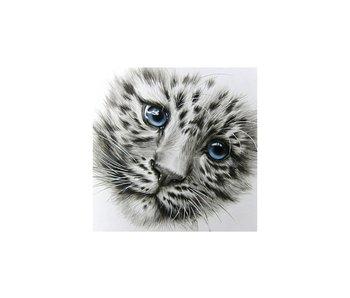 Dia paint WD2342 - Little Predator  38x38 cm