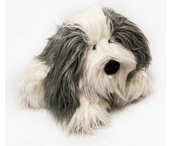 Hond harig liggend, 60x50cm