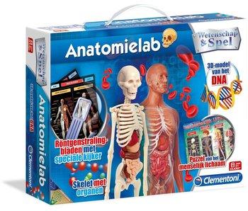 NL -  Laboratoire d'anatomie