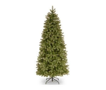 Sapin Poly Bayberry Slim 213 cm
