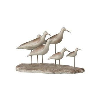 J-Line Vogels 6 Op Plank Polyresine Bruin/Greige