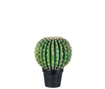 J-Line Cactus+Pot Zwart Poly Groen Large