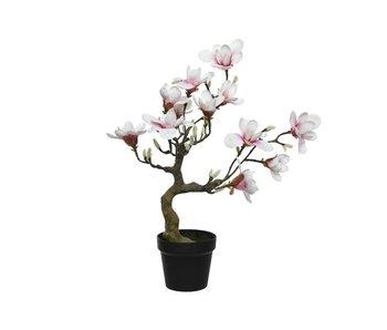 Magnolia polyester H60 cm