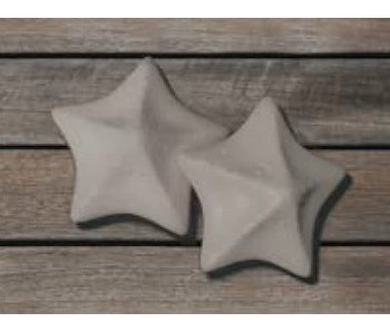 Absorbant Starfish Sponges - Pack of 2pcs (Boreal)