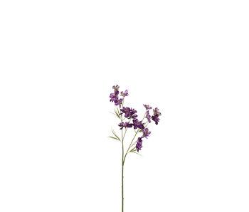 J-Line Fleur Delphinium 2 parties Plastique Violet Foncé