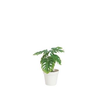 J-Line Blad Philo In Pot Plastiek Groen/Wit Medium