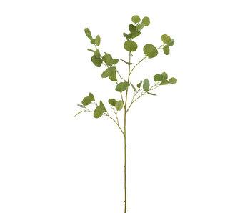 J-Line Eucalyptus Tak Plastiek Groen