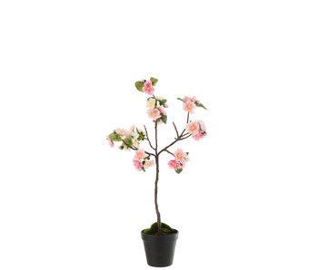 J-Line Arbre fleuri Plastique Rose / Marron Petit