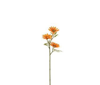 J-Line Bloem Madelief Plastiek Oranje