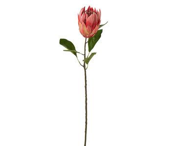 J-Line Branche Protea Plastique Rouge