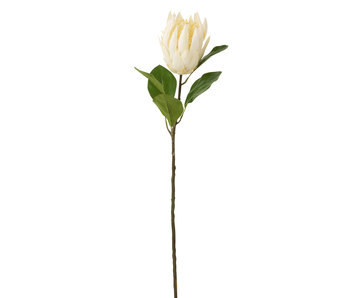 J-Line Protea Branche Plastique Ecru