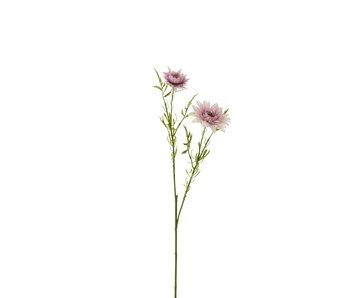 J-Line Daisy Plasticque Violet Clair