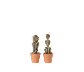 J-Line Cactus+Pot Kunststof Grn/Terracotta Large Assortiment Van 2