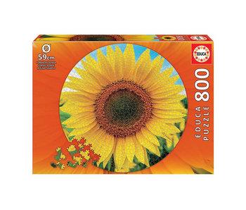 Educa Puzzel Educa Cirkel zonnebloem - 800 stukjes
