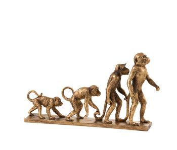 J-Line Monkey Evolution Poly Or Antique