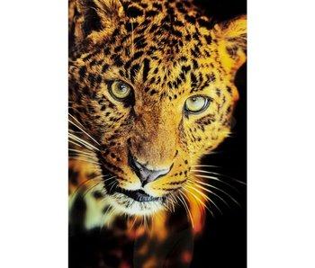 KARE design Glasschilderij Luipaard Shaka 120x80 cm