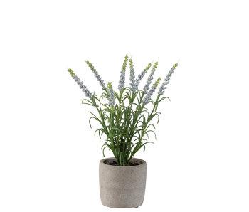 J-Line Lavendel In Pot Plastiek Licht Paars