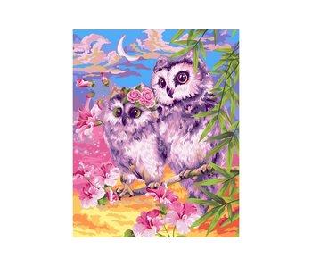 Schilderen op nummer:  Tender Owls / 40x50cm / 24 kleuren