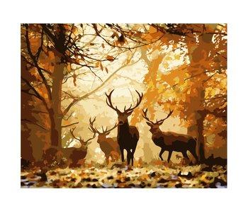 Schilderen op nummer:  Forest deer / 40x50cm / 16 kleuren