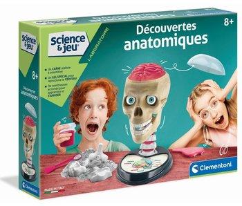 FR Découvertes anatomiques 8+
