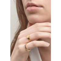 Scenic Signet Ring Verguld