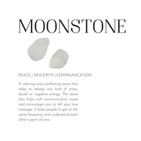 A Beautiful Story Daydream Moonstone Shell Necklace